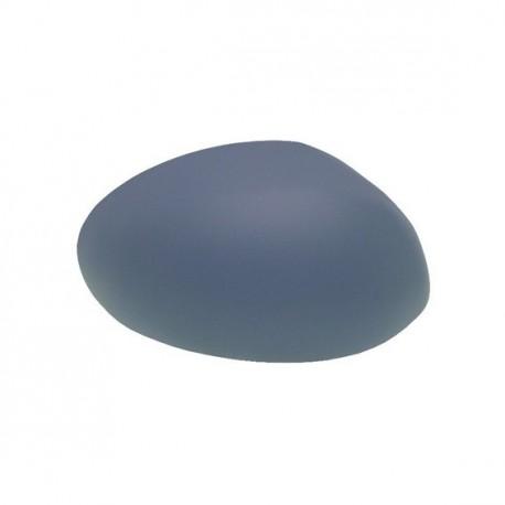 verre Rétroviseur D